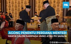 Agong penentu majoriti Perdana Menteri